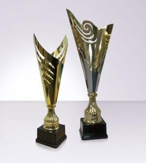 Modern Trophy Cups